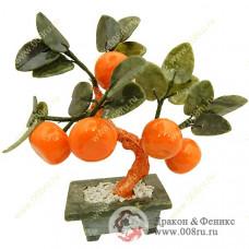 """Дерево """"Мандарин"""" с 5-ю мандаринами."""