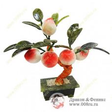 """Дерево """"Персик"""" с 5-ю персиками"""